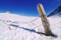 Remains of an old fence partially covered by snow. Pe&#241;a Ubi&#241;a, Asturias, Spain