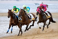Thoroughbred horses compete at sea shore with green horizon of Doana National Park and the whole seafront in Sanlucar de Barrameda, Cadiz, Spain The r...