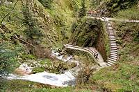 Germany, Black Forest, Schwartzwald, Baden Wurttemberg, Allerheiligen, waterfalls