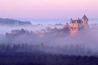 France, Dordogne, Perigord Noir, Dordogne Valley, Vitrac Montfort, Chateau de Montfort