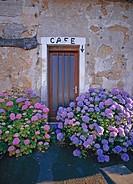 France, Sarthe, Jugne village, a cafe