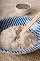 Close_up of sesame seeds on white rice
