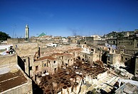 Morocco, Middle Atlas, Fez, Imperial City, medina listed as World Heritage by UNESCO, Fez El Bali, the tanners district