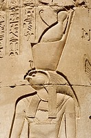 Egypt, Upper Egypt, Kom Ombo Temple, bas_relief with Horus God