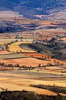 Paisaje de cultivo junto a Daroca