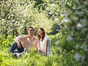 Couple Having Picnic In Orchard