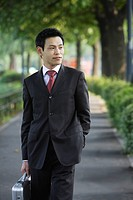 A well_dressed businessman, portrait