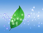 View of a green leaf with bubbles digital composite