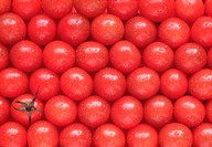 Top view of a stack of tomatoes