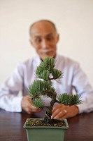 Potted plant on table with senior man in background