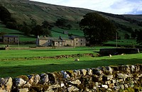 Europe, Great Britain, England, North Yorkshire, Yorkshire Dales