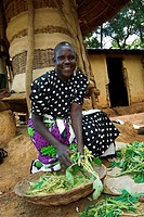 Woman preparing freshly picked saughboum crop outside hut in village, Western Kenya