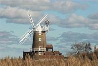 Cley Windmill with reedbed in foreground, Cley, Norfolk, England, february