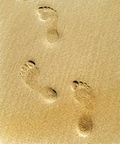 Foot prints in sand.