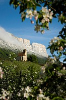 Chapel in the mountains behind blooming apple trees, Eppan an der Weinstrasse, South Tyrol, Italy, Europe