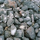 Rocks close_up.