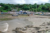 Harbour at low tide, Fishguard, Pembrokeshire, Wales, august