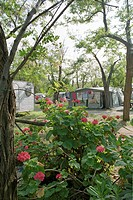 Camping site with caravans and tents, Castellabate, Cilento, Italy