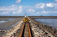 Trolley Causeway to Hallig Nordstrandischmoor, North Frisian Islands, Schleswig_Holstein, Germany