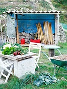 Picture of garden with furniture vegetables and shed.