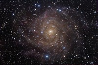 The Spiral Galaxy IC342 in Camelopardalis