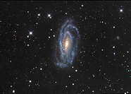 NGC 5033 Spiral Galaxy in Canes Venatici