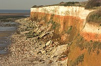 Eroded chalk cliffs and beach at low tide, Hunstanton cliffs, Norfolk, England