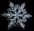 Snowflake, LM.