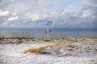A snowy beach Gotland Sweden.