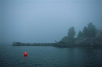 Fog Over Port Sweden.