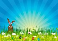 Ostern _ Osterhase auf grüner Wiese
