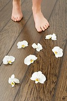 Female feet and orchid flowers