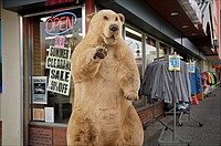 Retail business along an Anchorage street displays a large, fake stuffed bear