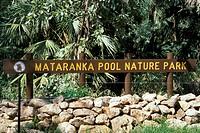australia, oceania, mataranka pool nature park, sydney