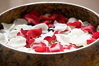 Petals in a bowl (thumbnail)