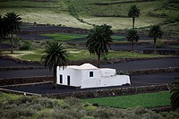 Finca in the wine_growing area of Lanzarote, Canary Islands, Spain
