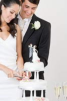 Bride and groom cutting a wedding cake