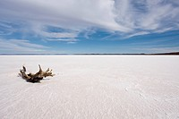 Dead lake in Gawler Ranges, south Australia