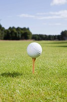 Golf ball and tee on fairway (thumbnail)