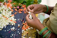 Woman making wreaths from jasmine flowers