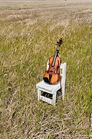 violin with small chair in grassland , south korea