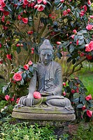 Buddha statue in the japanese garden of Leverkusen