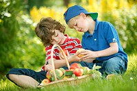 two children boys eating apples in the garden