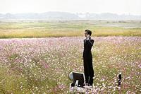 businessman standing on desk in cosmos flowers field