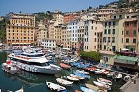Camogli, Liguria, Italy, Europe