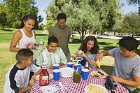 Boy 13_15 with family at picnic.