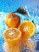 Mandarin oranges on reflective surface with drops of water