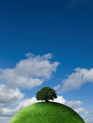 Tree on top of grassy globe
