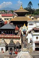 UNESCO World Heritage, Hinduism, architecture, pagoda, Pashupatinath temple, Kathmandu, Nepal, Himalaya, Asia