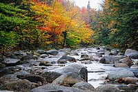 View of a Rocky Creek During Fall, Lost River, White Mountain National Forest, New Hampshire, USA